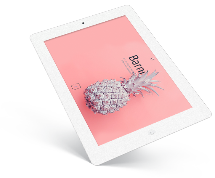 mobile optimized websites for ipad